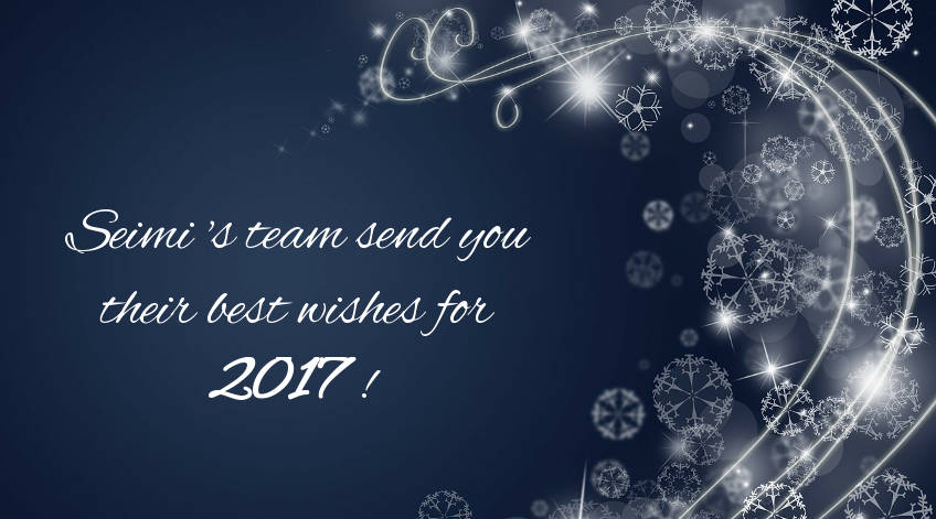 SEIMI's marine equipments send you their best wishes for 2017