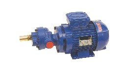 GR50TRI-close coupled gear pump oil 220/380v  triphase 50l/mn-seimi